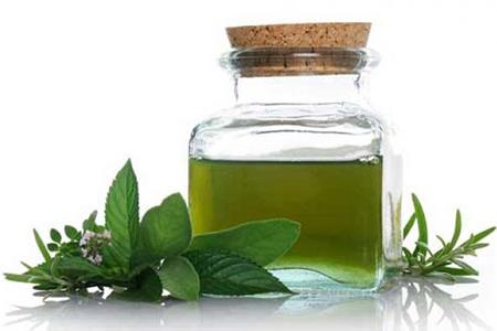 cách chữa bệnh lậu đơn giản nhất bằng tinh dầu trà