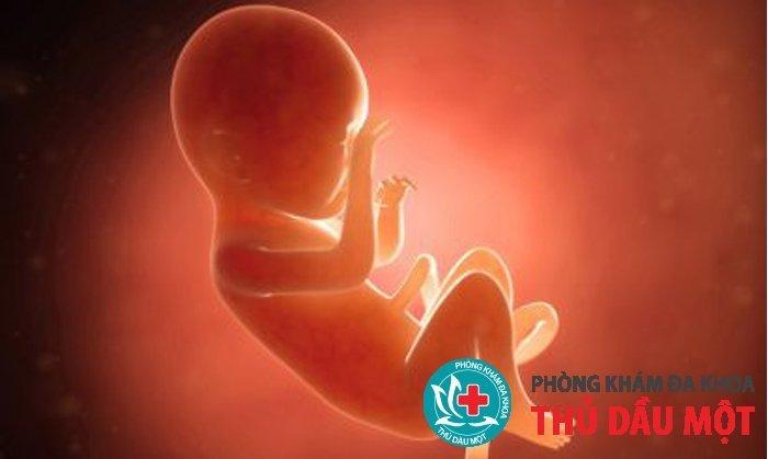Đình chỉ thai 26 tuần có nguy hiểm gì không?