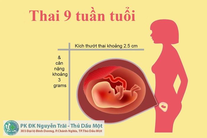 Đình chỉ thai 9 tuần có nguy hiểm không?