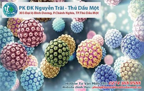 Virus HPV có rất nhiều chủng gây u nhú