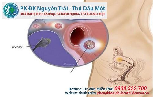 Thai 3 tuần tuổi siêu âm có thấy không?